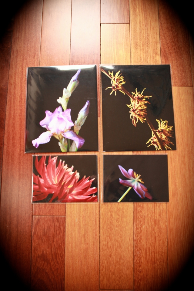2- 8x10s and 2-5x7 Prints
