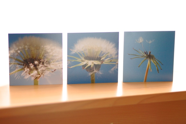 Wishes: set of three 4x4 inch wood prints